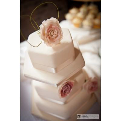Hexagonal 3 Tier Cake with Pink Flowers