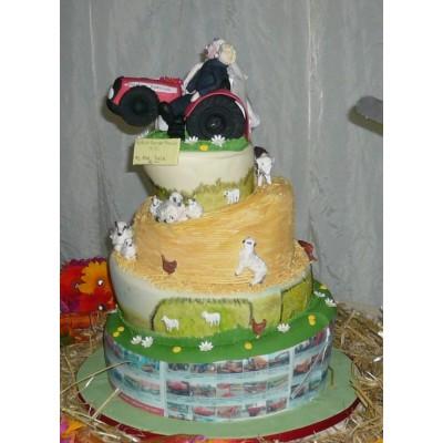 4 tier wonky cake with farming theme